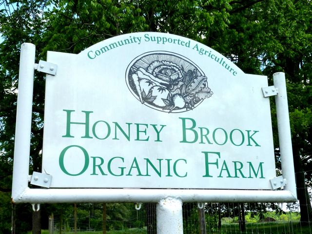 Honey Brook Organic Farm
